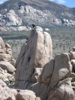 Climbers at Joshua Tree