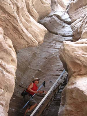 slot canyon hike with ladders
