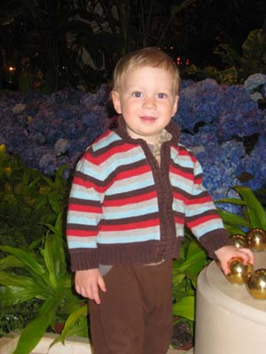 Our Grandson, Pieter