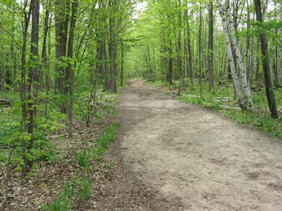 peacefull  trails, Bruce Trail