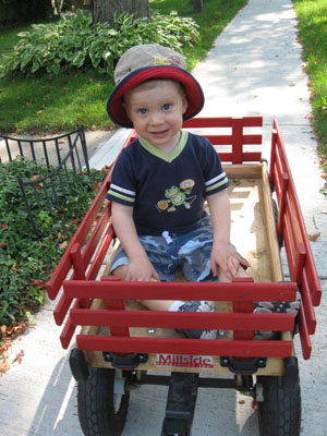 Pieter in his Wagon