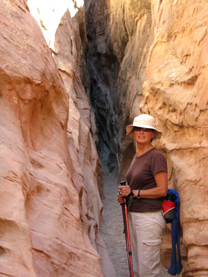 Little Wild Horse Slot Canyon