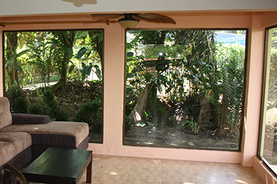 Costa Rica - our back yard view