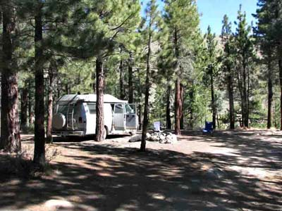 Forest Camping Eastern Sierras
