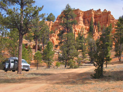 Free Forest camping in Utah