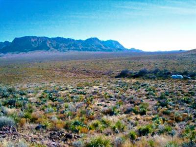 This is one of the backcountry sites. As you can see you are out on your own with beautiful view of the Chisos Mountains. This site is about 2 1/2 miles from the main road via gravel, two-track road.